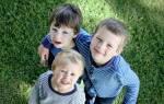 Положенные выплаты за третьего ребенка