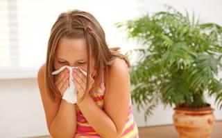 Аллергия на клеща домашней пыли у ребенка лечение