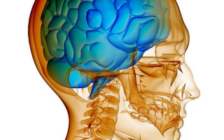 Внутричерепное давление у ребенка 12 лет симптомы и лечение