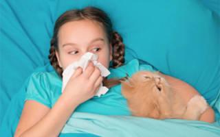 Симптомы аллергии на кота у ребенка