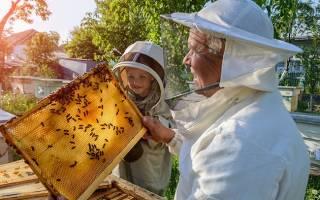 Бывает ли у детей аллергия на мед