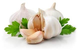 Чем полезен чеснок при грудном вскармливании?