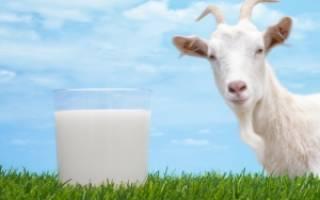 Козье молоко для грудничка с какого возраста как давать