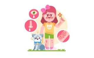 Аллергия на собак у детей симптомы и лечение