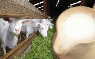 Во сколько месяцев можно давать ребенку молоко козье