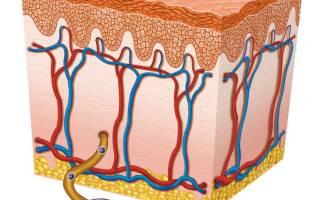 Лечение герпеса на губах у ребенка в домашних условиях быстро