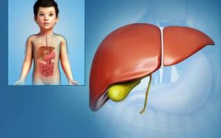 Густая желчь в желчном пузыре у ребенка лечение