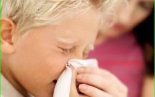 Начало простуды у ребенка чем лечить народные методы лечения